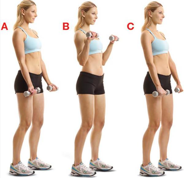 pierderea de grăsime divizată partea superioară a corpului inferior