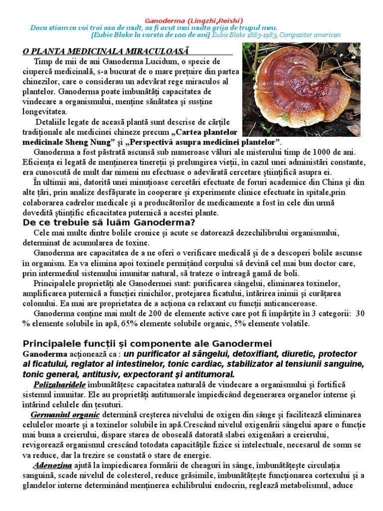 ciuperca reishi pierde in greutate