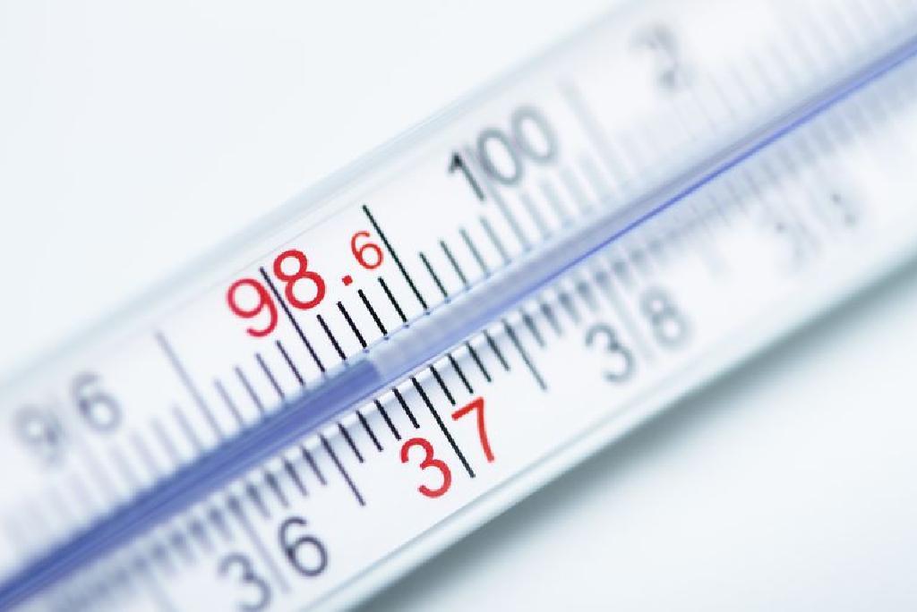 pierdere în greutate adalah stimulează metabolismul și arde băutură grasă
