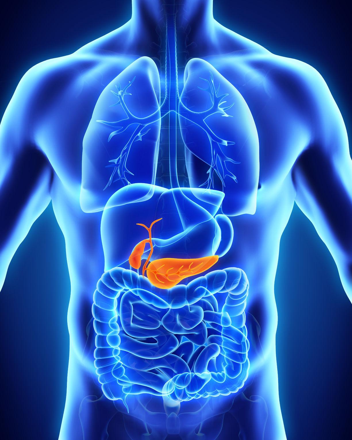 pierderea în greutate a metabolismului b6