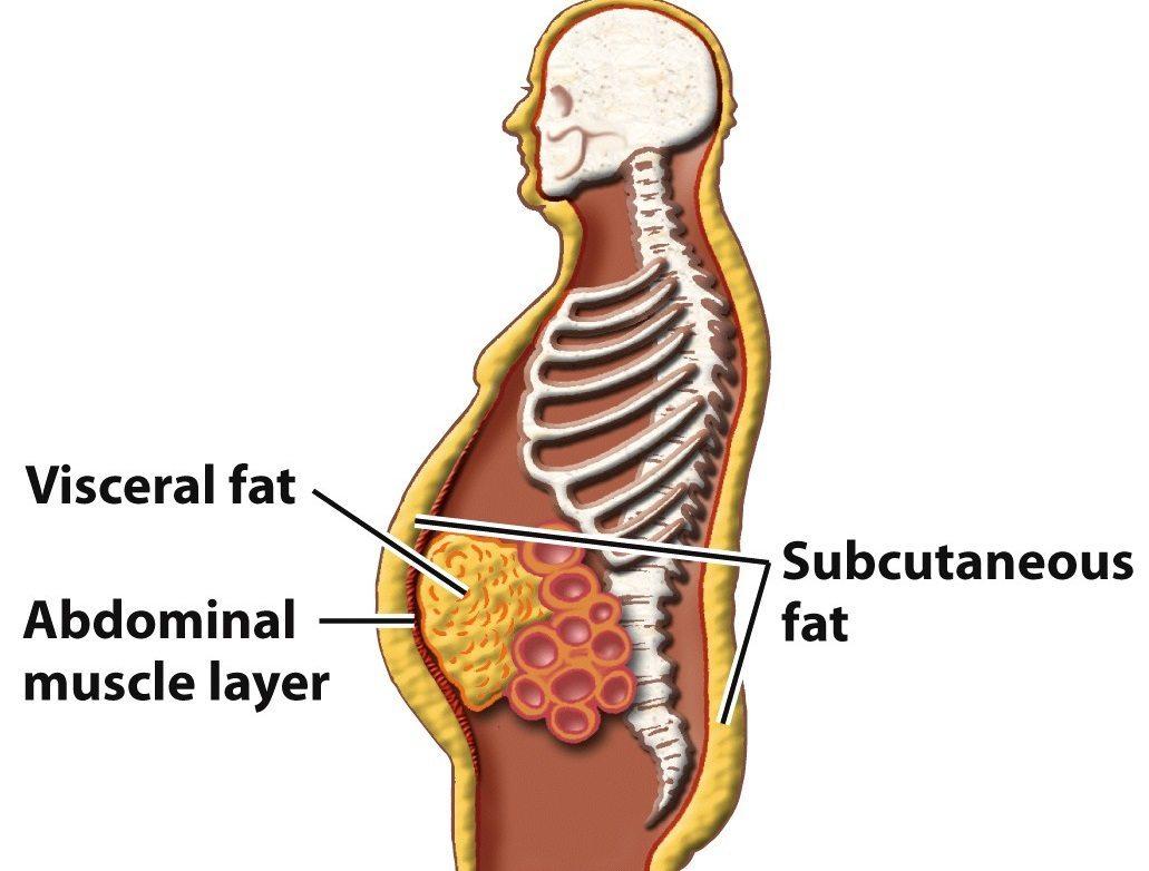 cum să elimini grăsimea din jurul șoldurilor căile naturale de a pierde în greutate