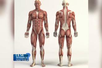 Pierdere în greutate mascul de 19 ani cât timp să slăbești 5 kilograme de grăsime