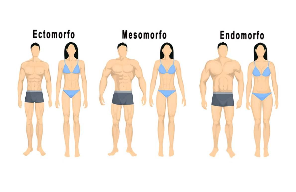 rutina corpului complet pentru pierderea de grasimi pierdere în greutate știri recente