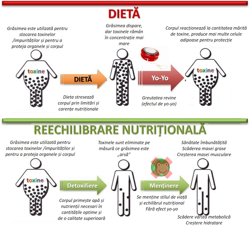 enzimele te fac să pierzi în greutate