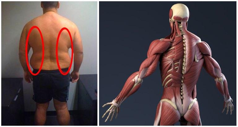 cum să pierzi grăsimea superioară a corpului masculin pierzi inci mai întâi înainte de greutate