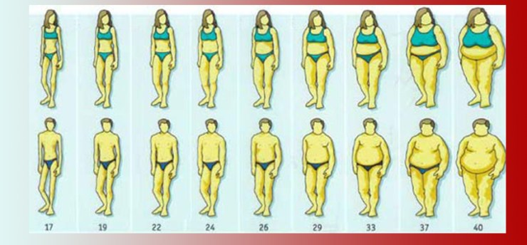 celulele grase și pierderea în greutate pierdere în greutate natalie
