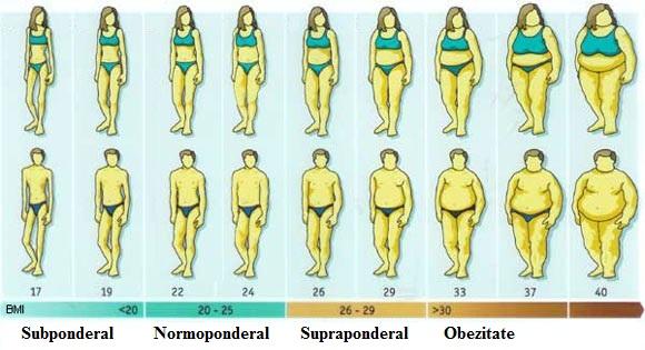 Cum sa scapi de grasimea corporala? - Housefit Romania