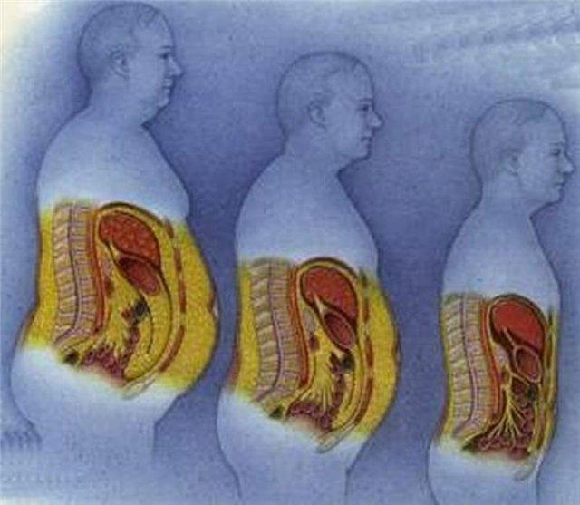 pierde celulele grase
