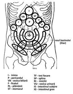 corp czestochowa subțire