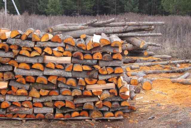 pierde in greutate toaca lemnul natalie jefuiește pierderea în greutate
