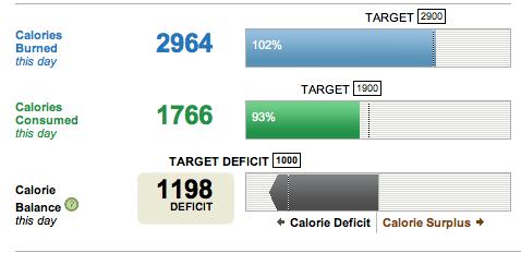 pierdere în greutate deficit mic