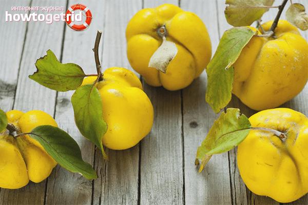 Gutuile – fructele minune care lupta impotriva cancerului. Ce vitamine contin
